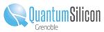 Quantum Silicon